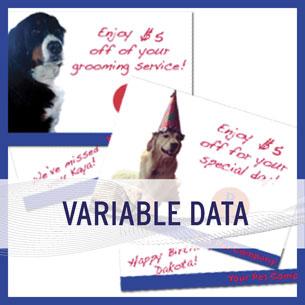 variabledata